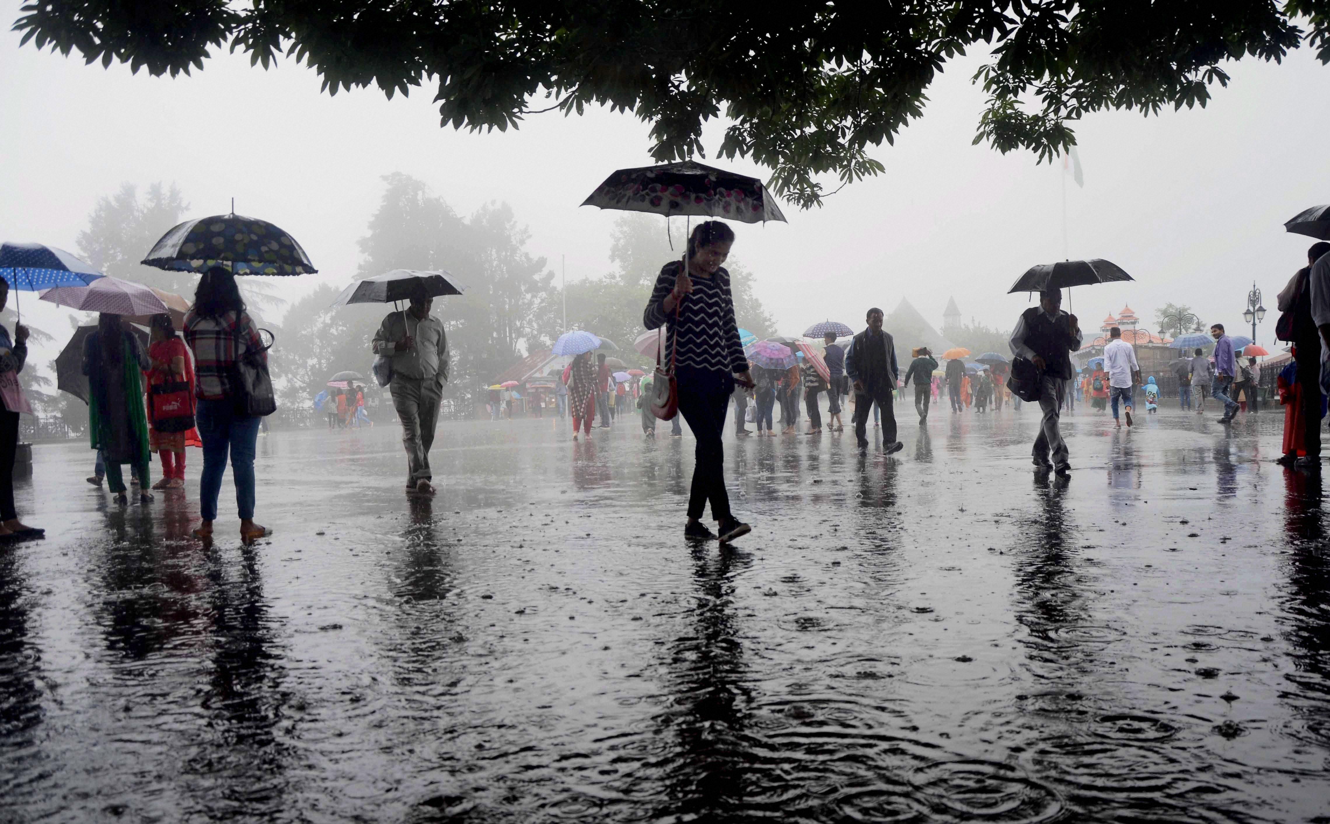 Image result for ધીમી ધારે વરસાદ યથાવત
