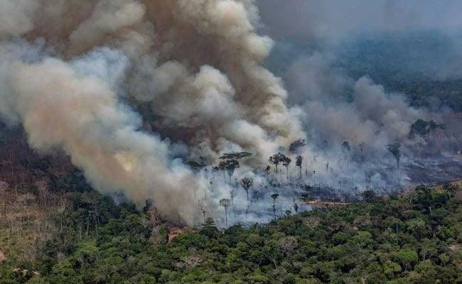 એમેઝોનના જંગલોમાં સતત નવી જગ્યાઓ પર વધી રહી છે આગ